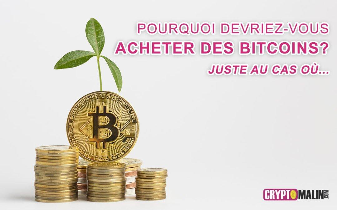 Pourquoi devriez-vous acheter des Bitcoins ? juste au cas où…